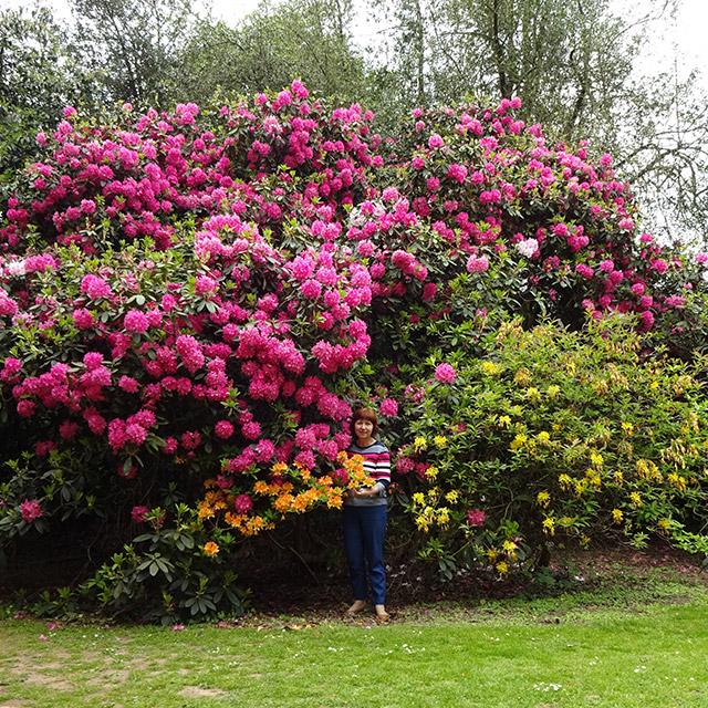 Изложение за цветя в Англия