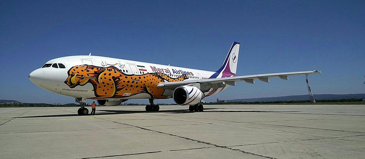 Самолет на летище София