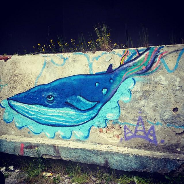 Кит графити