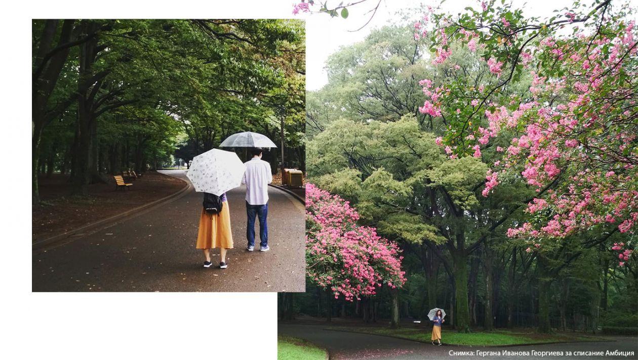 парк япония