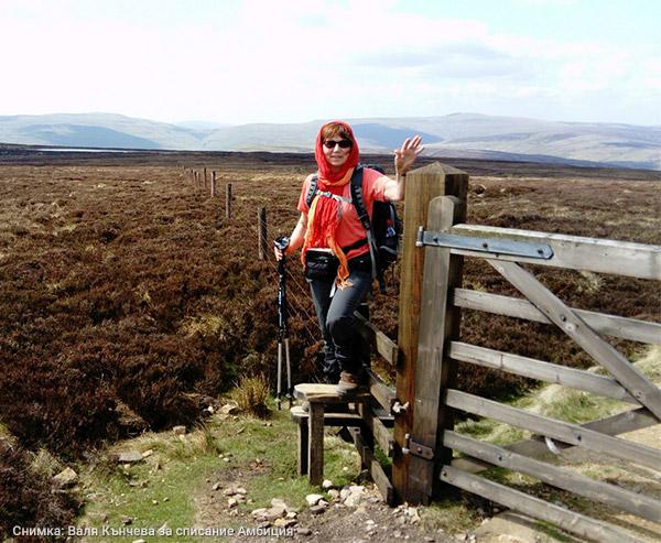 порта врата в поле