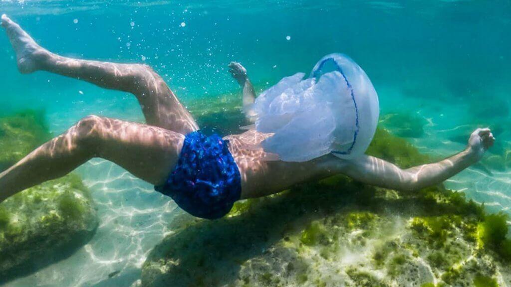 Медуза в черно море